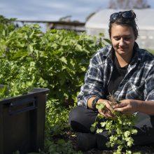 International Women's Day and our fab Farmer Spotlight