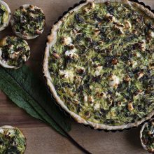 Red Vein Sorrel, a little rustic tart and an invitation to our PANEL DISCUSSION