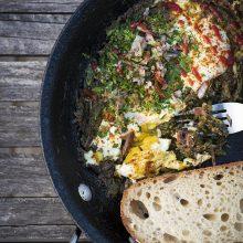 Farmily Picnic and a tasty pan of Shakshuka