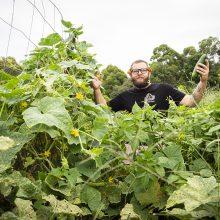 City farming – Meet Matt, he grows your food!