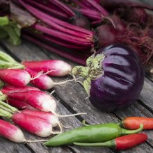 Local Urban Agriculture (and a tasty little roasted eggplant)